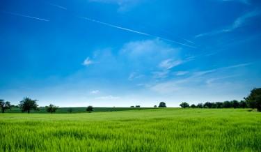 okoliš priroda ekologija